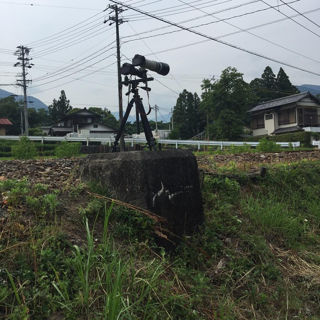 2015ooigawa70.jpg