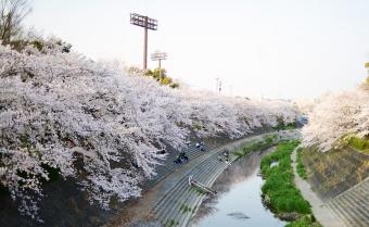 2015_03_31_01.jpg