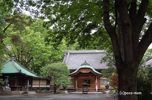 02saiyuki2122.jpg