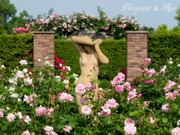 花菜ガーデン A