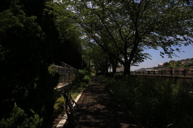 江ノ島+023_convert_20150720205647