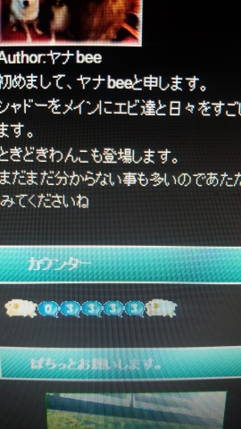 IMG_20150314_000828 (270x480)