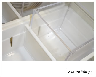 DSC01564.jpg