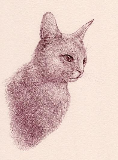 2015_ハイツ黒猫博物画-技法研究室_06