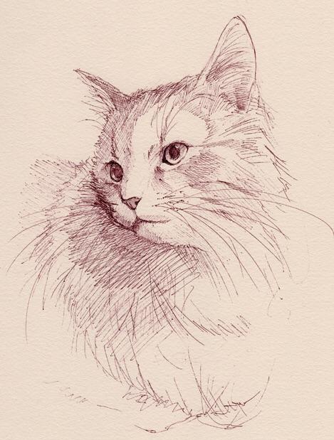 2015_ハイツ黒猫博物画-技法研究室_05
