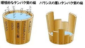 たんぱく質の桶