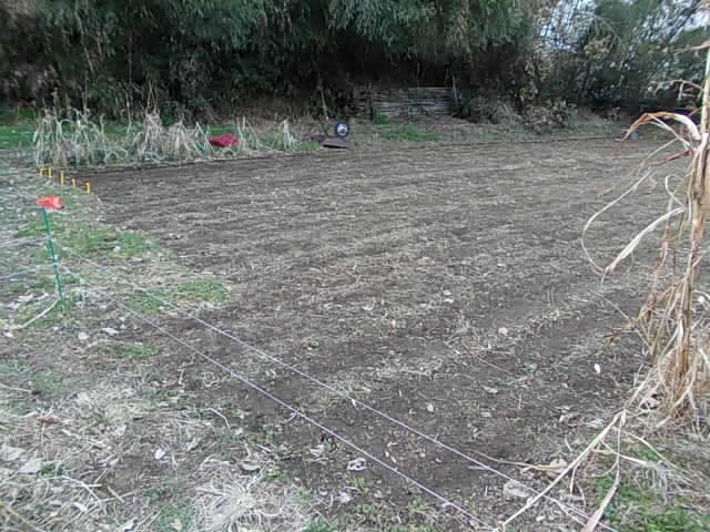Farm 20150204