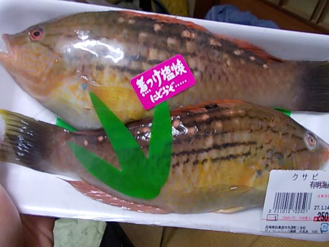 Kusabi fish 20150113