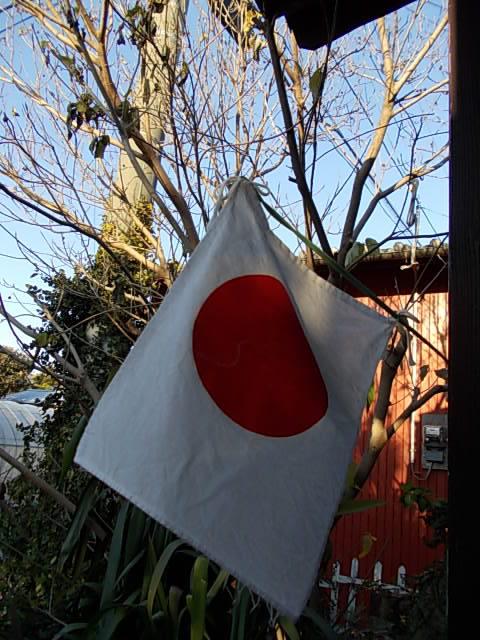 Flag 20150112