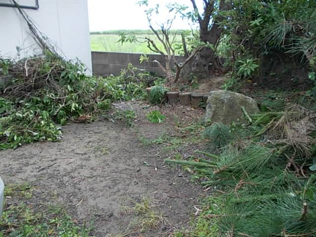 Garden 20150523