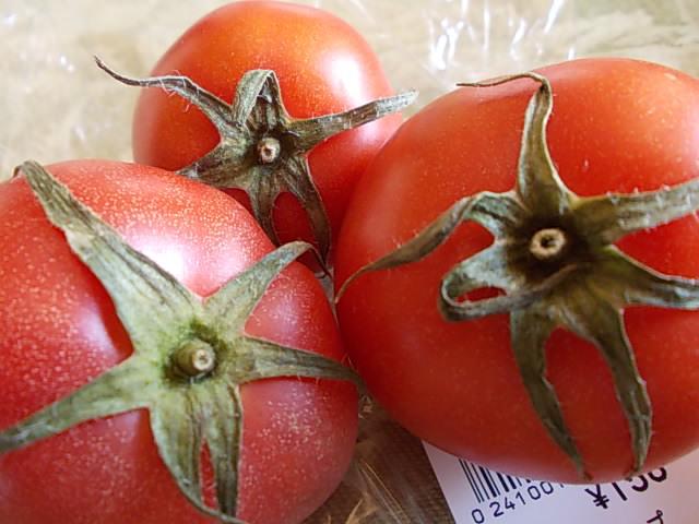 Tomato, Harajou 20150426