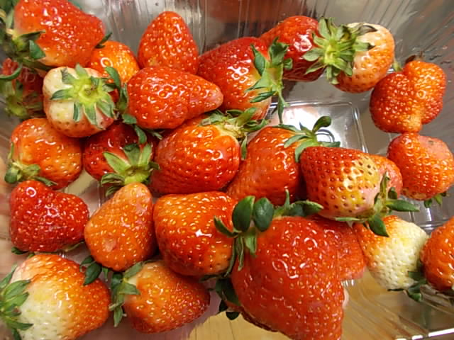 Strawberry 20150323