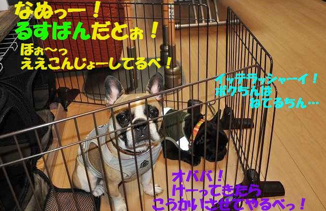 DSC_0067_20150709135319320.jpg