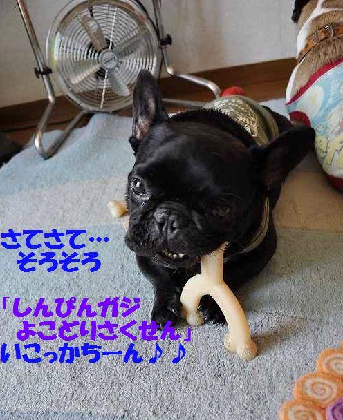 DSC_0114_20150701163331f0b.jpg