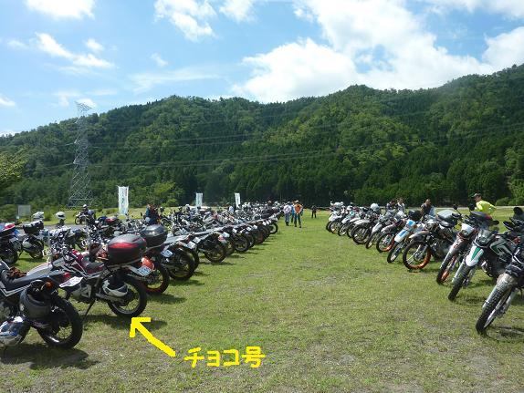 P1280395b.jpg