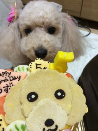 柚子5歳IMG_0424