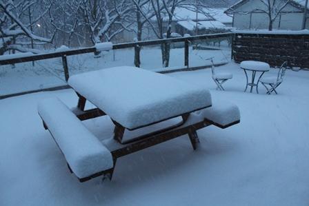 0311雪景色