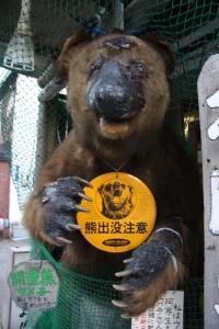 bear_umeko.jpg