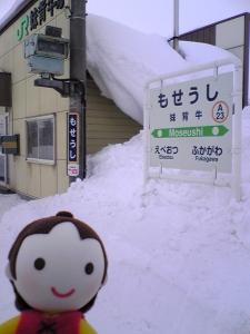 moseushi_heidi.jpg