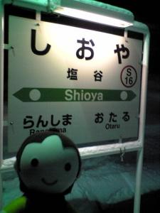 shioya_heidi.jpg