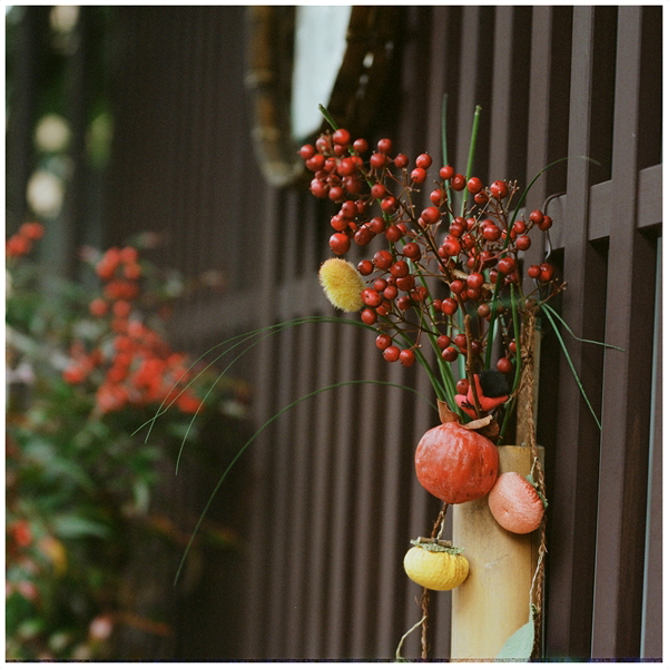 16-cf120-2015-2-1-portra400-haseel--郡上-1-120910001-n_R