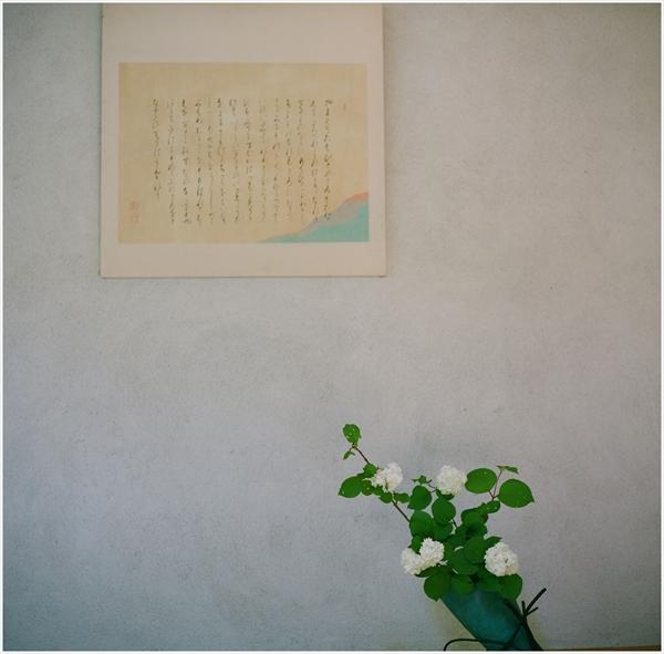 ローライ-2015-5-10-fuzi160-牡丹-10-55790010_R