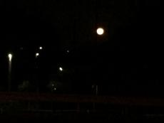 ズームで撮り直してみたけどやっぱイマイチ。 #満月