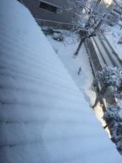 屋根も真っ白じゃ。よもやこれほど積もるとは。 #雪 #odawara