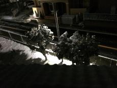 街灯がLEDになったんで灯りが白々して雪が映える。