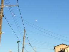#海月姫 映画に出てきたクラゲみたいな月って、丁度こんな感じか?