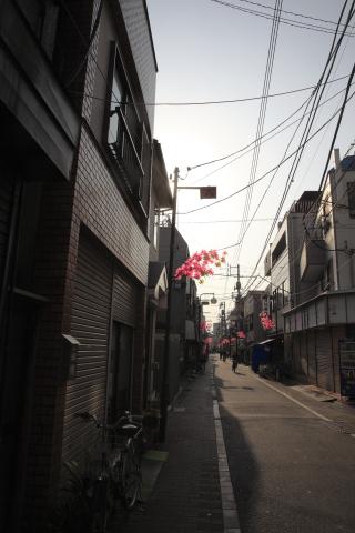 20150326hinata.jpg