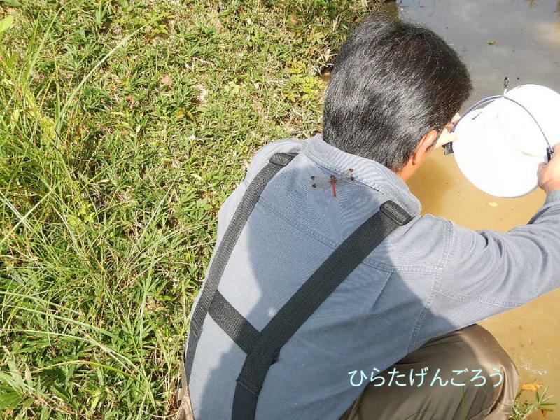 hunter+jyun3.jpg
