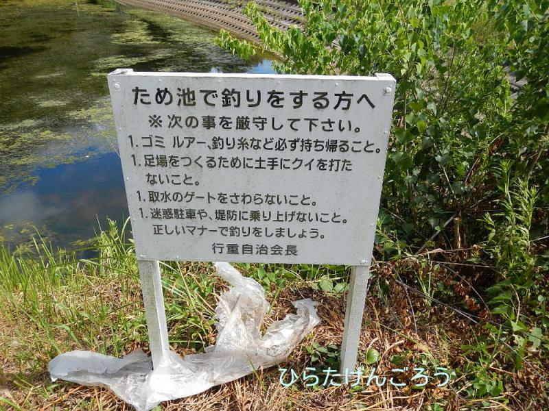 yukisige+pond1.jpg