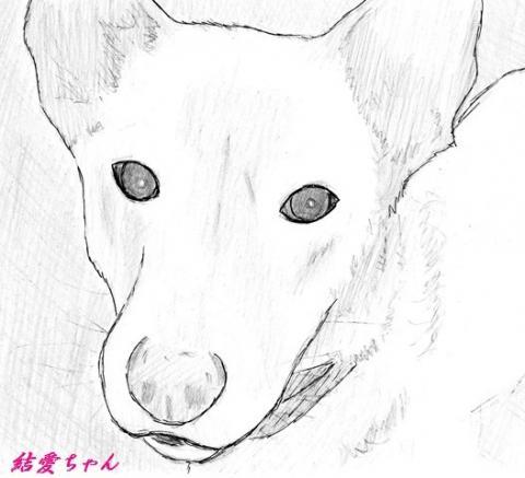 結愛ちゃん_convert_20150716085725
