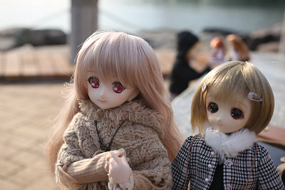 野撮2_6