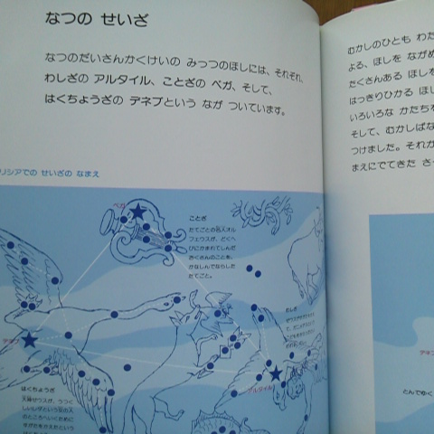 DCIM0448.jpg
