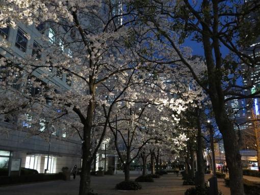 2015新宿