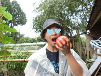 tomato_convert_20150722195036.jpg