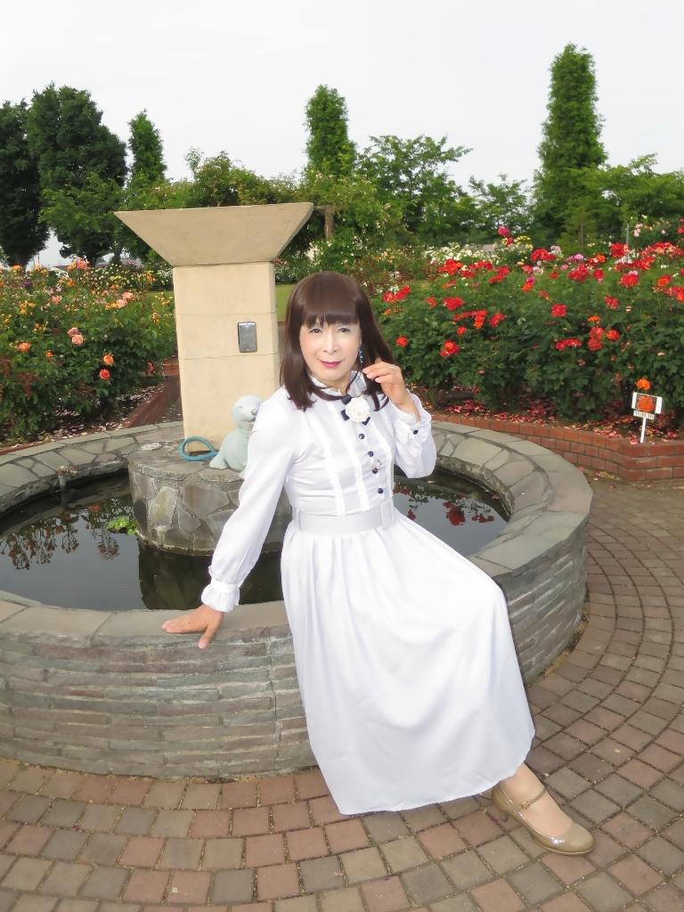 薔薇とワンピB(1)