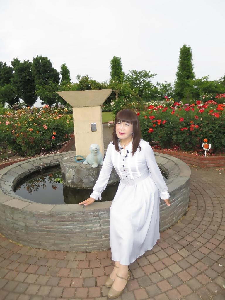 薔薇とワンピB(3)