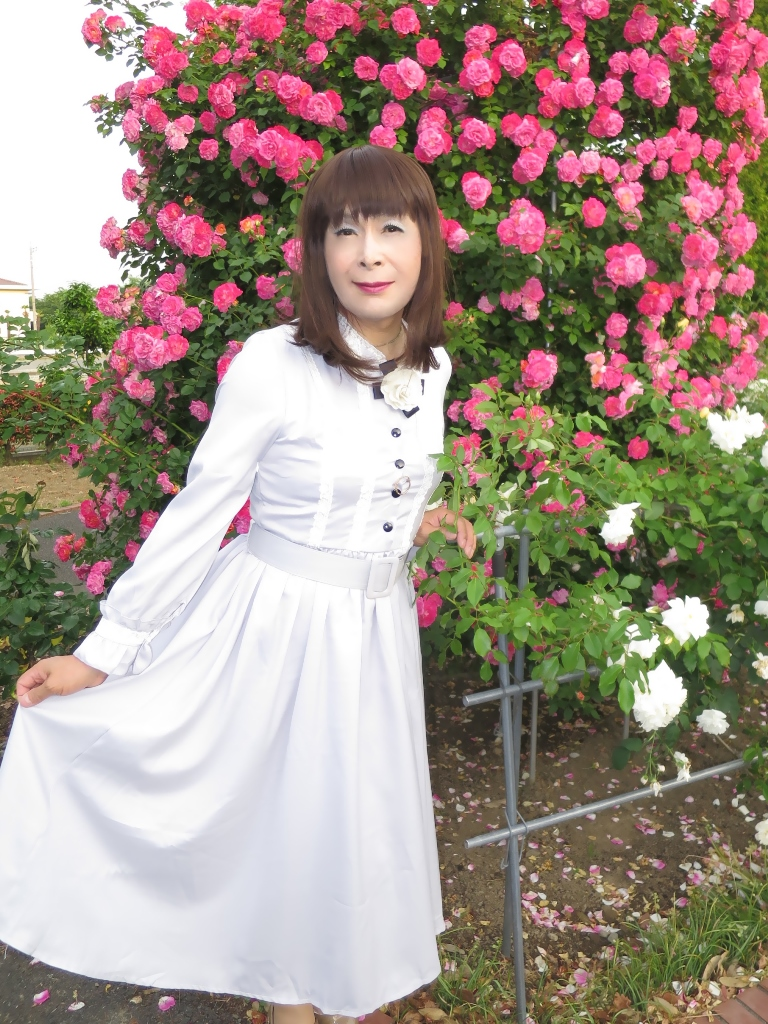 薔薇とワンピB(6)