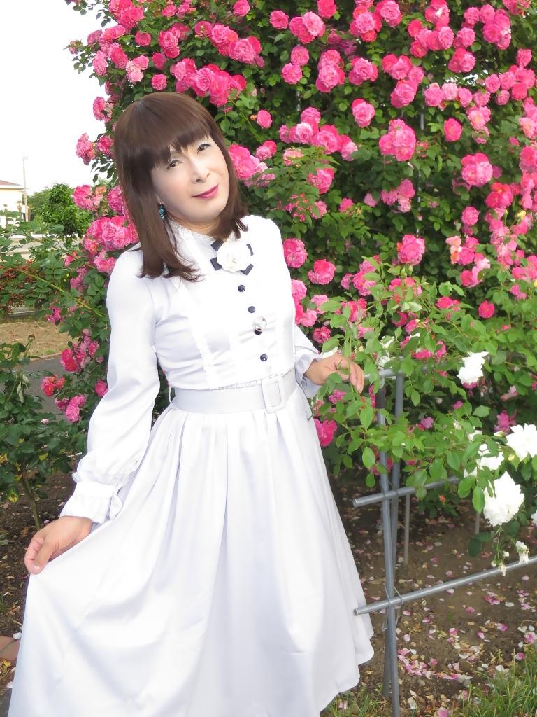 薔薇とワンピB(7)