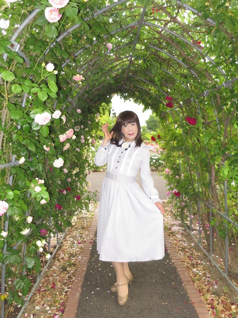 薔薇とワンピF(2)