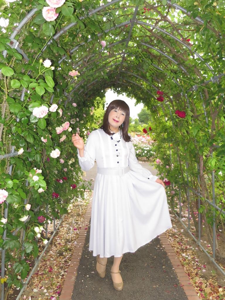 薔薇とワンピF(3)