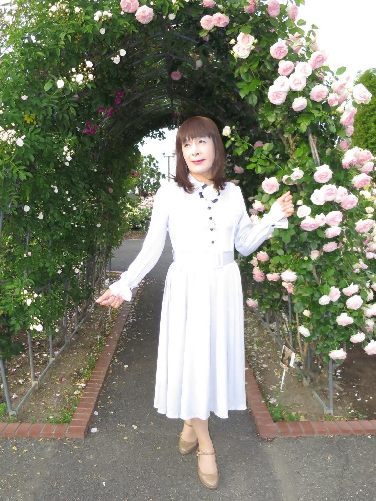 薔薇とワンピF(4)