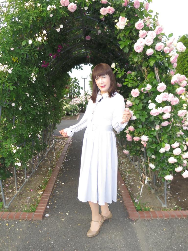 薔薇とワンピF(5)
