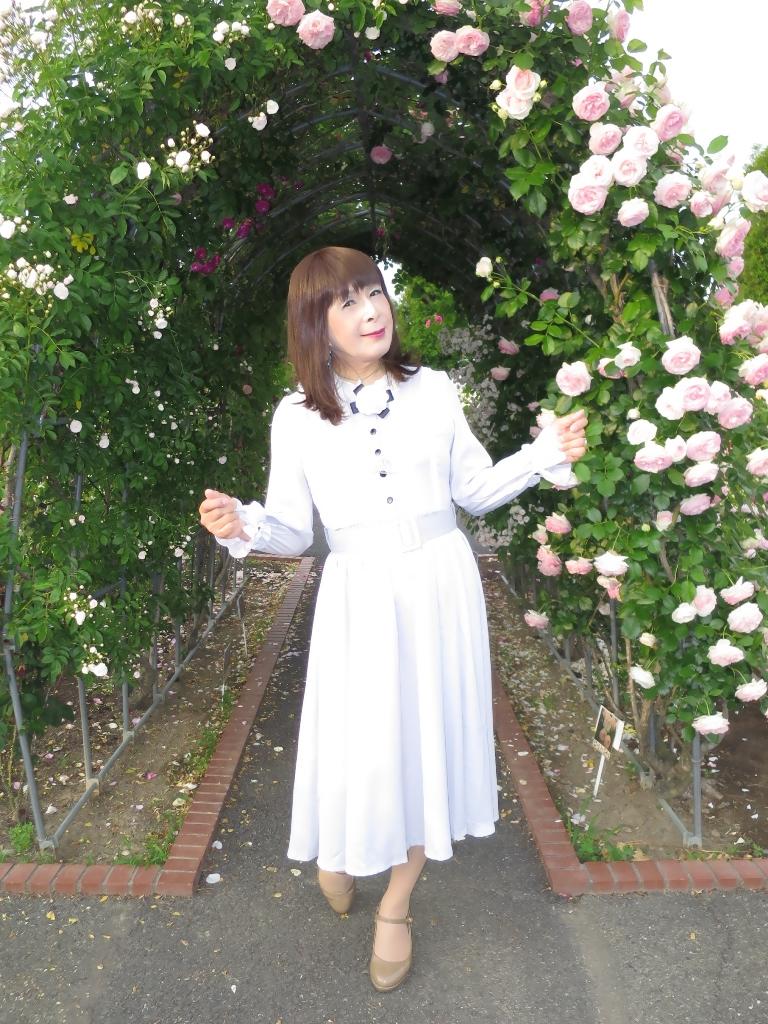 薔薇とワンピF(6)