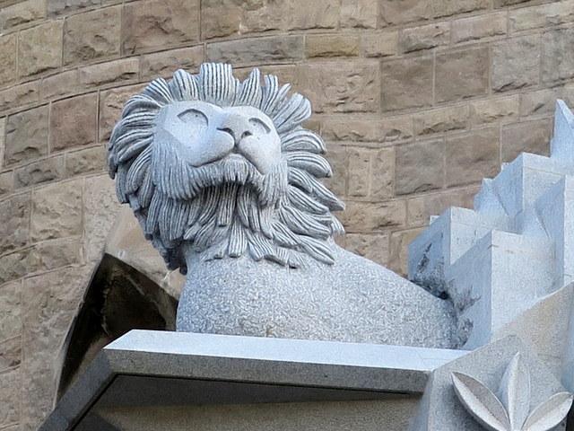 lionking (3)