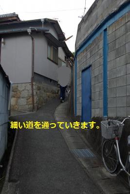 IMGP7715_convert_20150511215019.jpg
