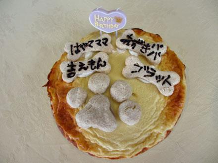 ももままさんお手製ケーキ